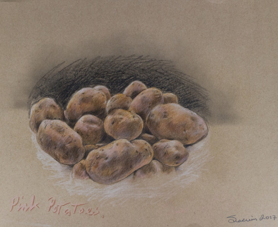 <span class=&#34;artist&#34;><strong>Sharvin Shahrokh</strong></span>, <span class=&#34;title&#34;><em>Pink Potatos</em>, 2017</span>