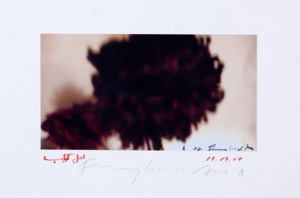 Fereydoun Ave, Untitled, 2007
