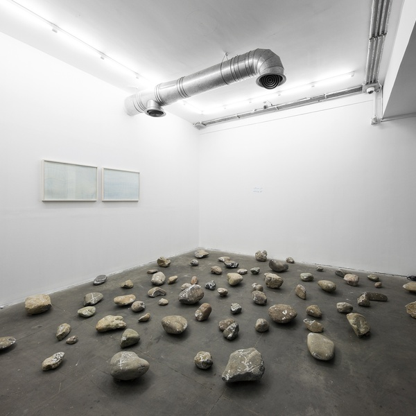 "Leila Mirzakhani | ""Stones and the River"" Electric Room 46/50"